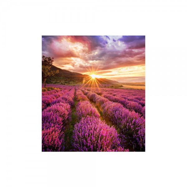 Samsung IF025HS Full-HD Paket LED-Wall 2.5mm Pixel Pitch