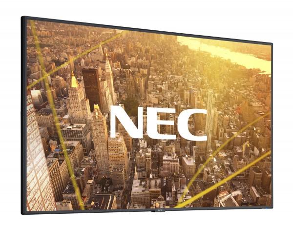 NEC MultiSync® C501